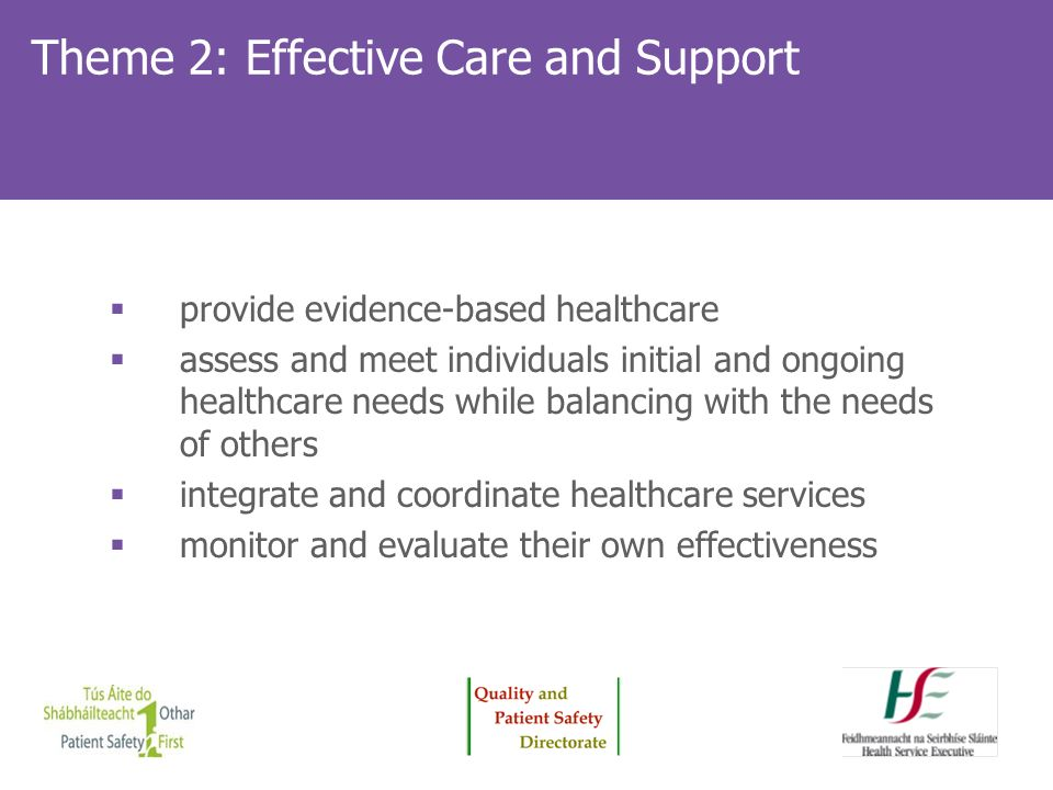 Theme 2: Effective Care and Support