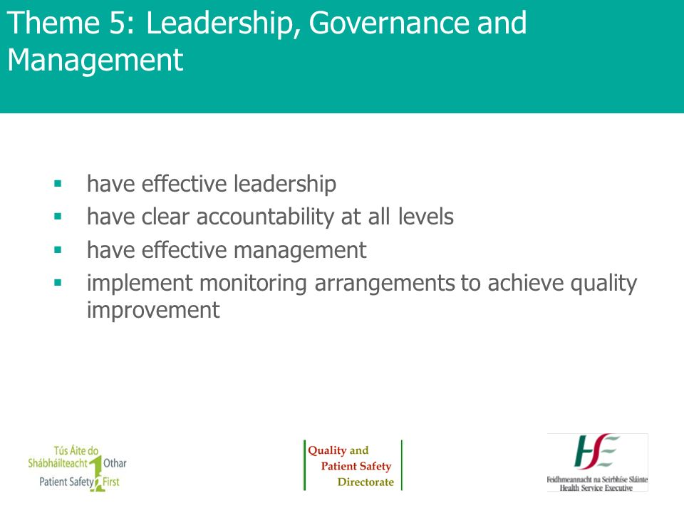 Theme 5: Leadership, Governance and Management