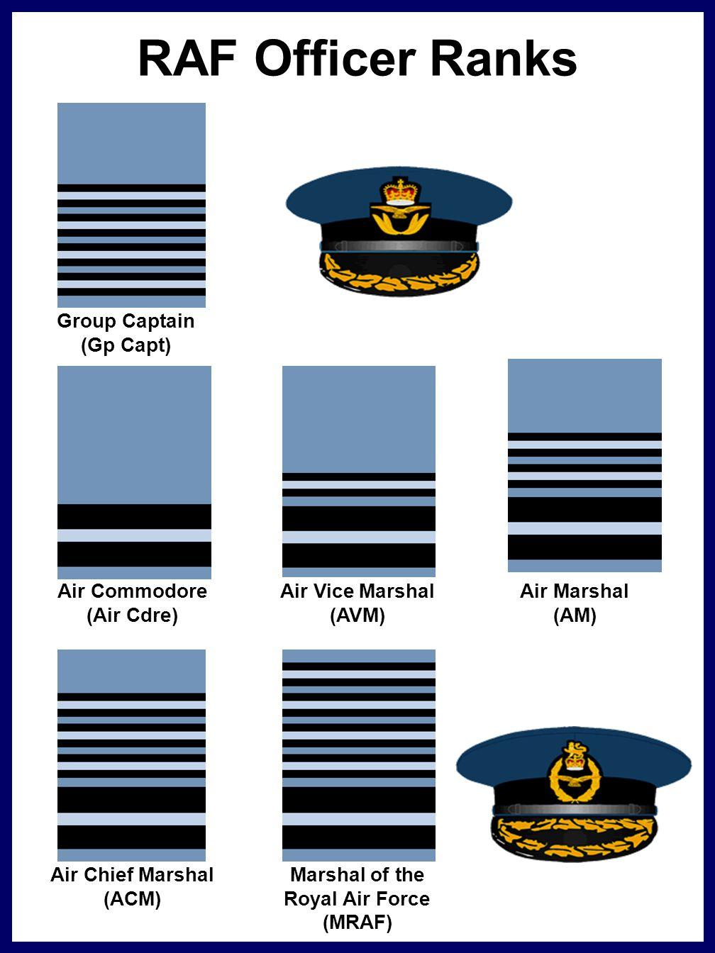 Classification Badges - ppt video online download