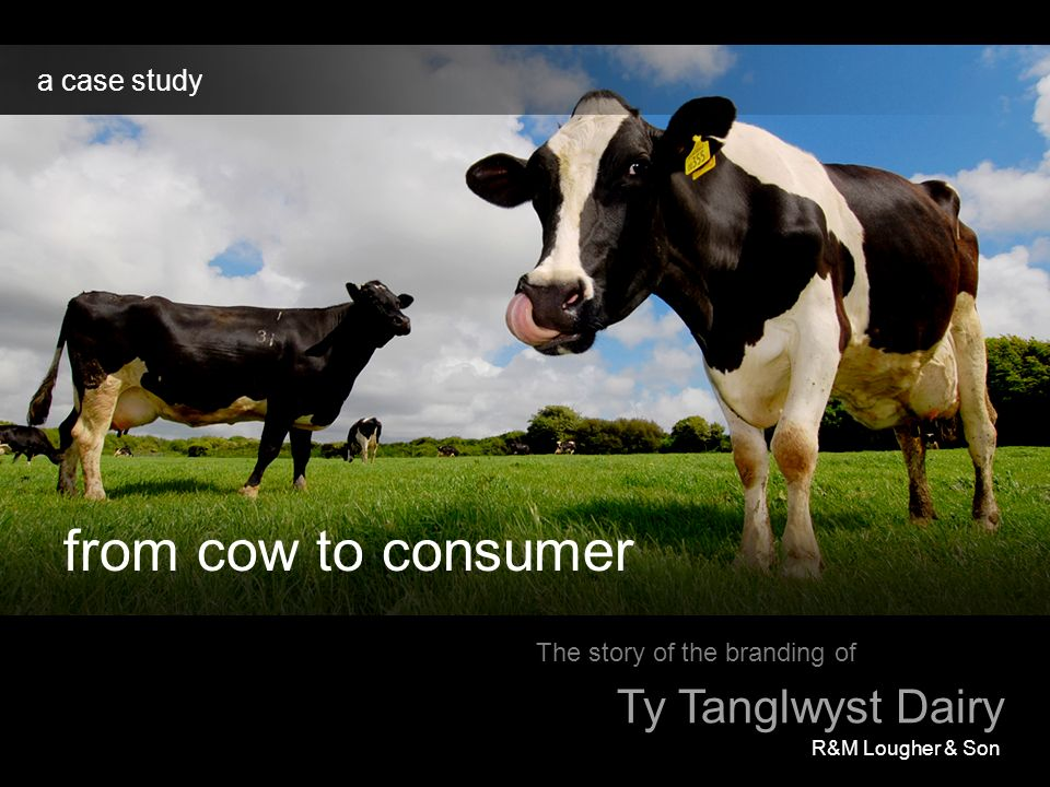 from cow to consumer Ty Tanglwyst Dairy a case study