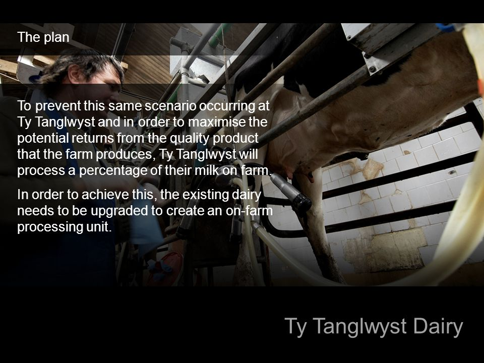 Ty Tanglwyst Dairy The plan