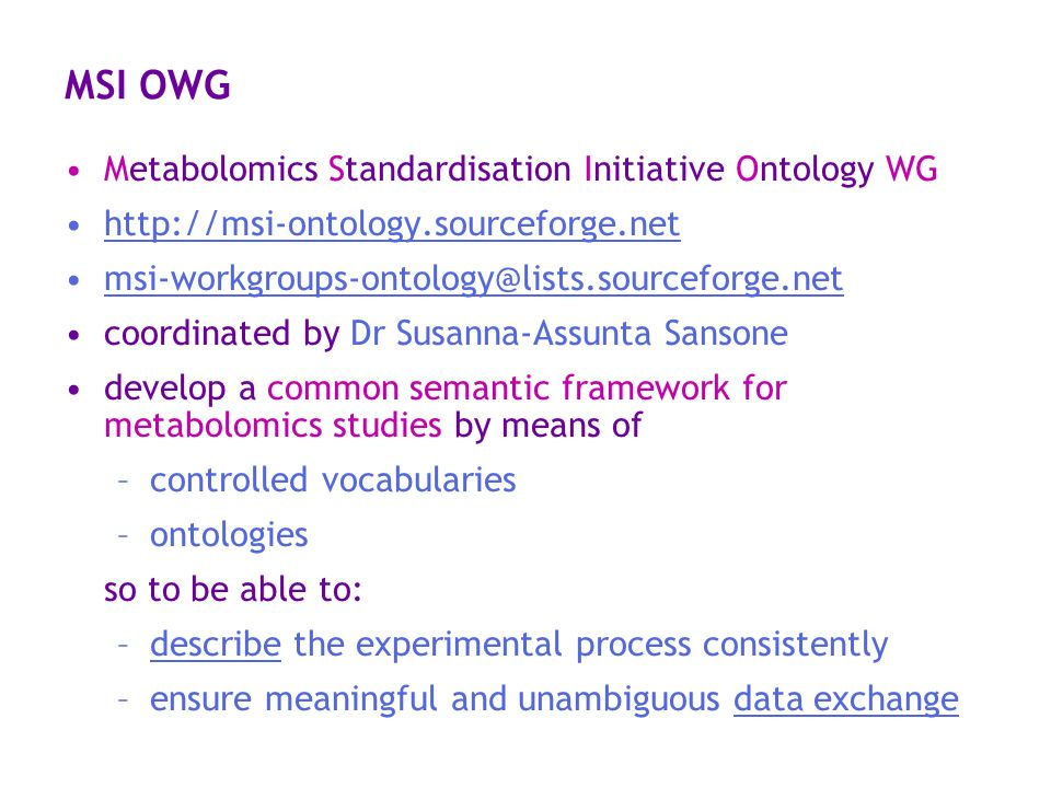 MSI OWG Metabolomics Standardisation Initiative Ontology WG