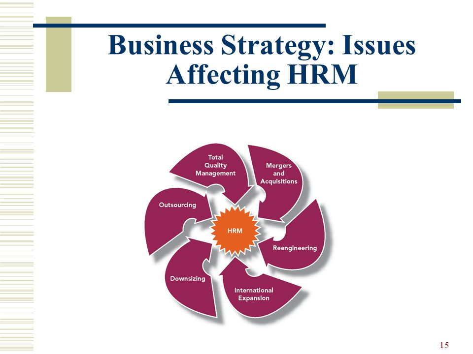Business Strategy: Issues Affecting HRM