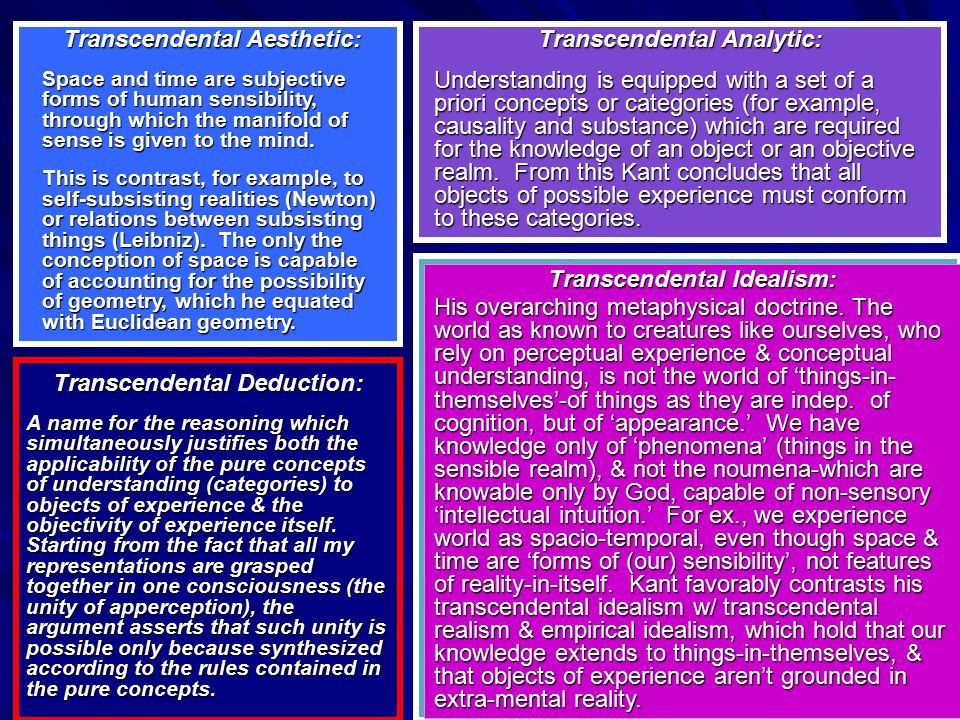 Transcendental Aesthetic: Transcendental Analytic: