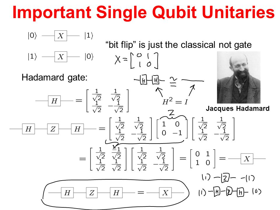 Important Single Qubit Unitaries