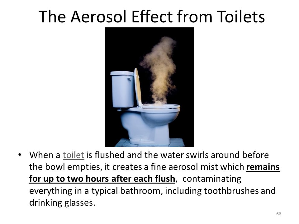 The Aerosol Effect from Toilets