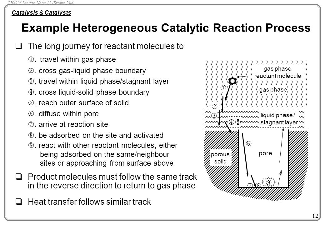 catalysis Catalysis catalysis is the speeding up of a chemical reaction by a chemical species that does not enter into the stoichiometry of the reaction.