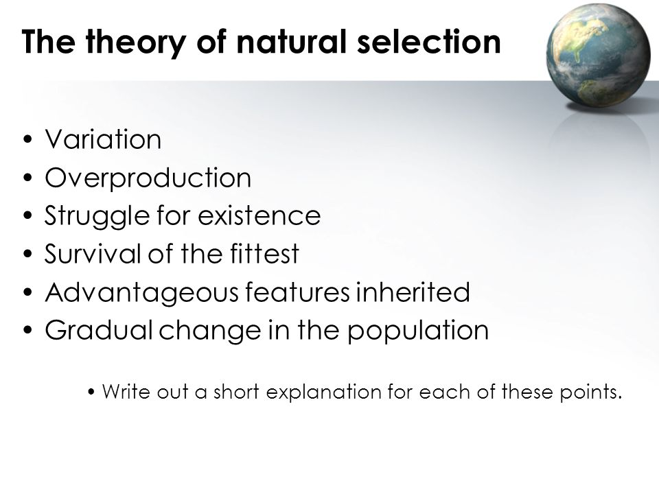 The theory of natural selection