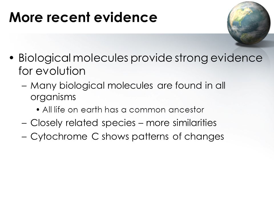 More recent evidence Biological molecules provide strong evidence for evolution. Many biological molecules are found in all organisms.