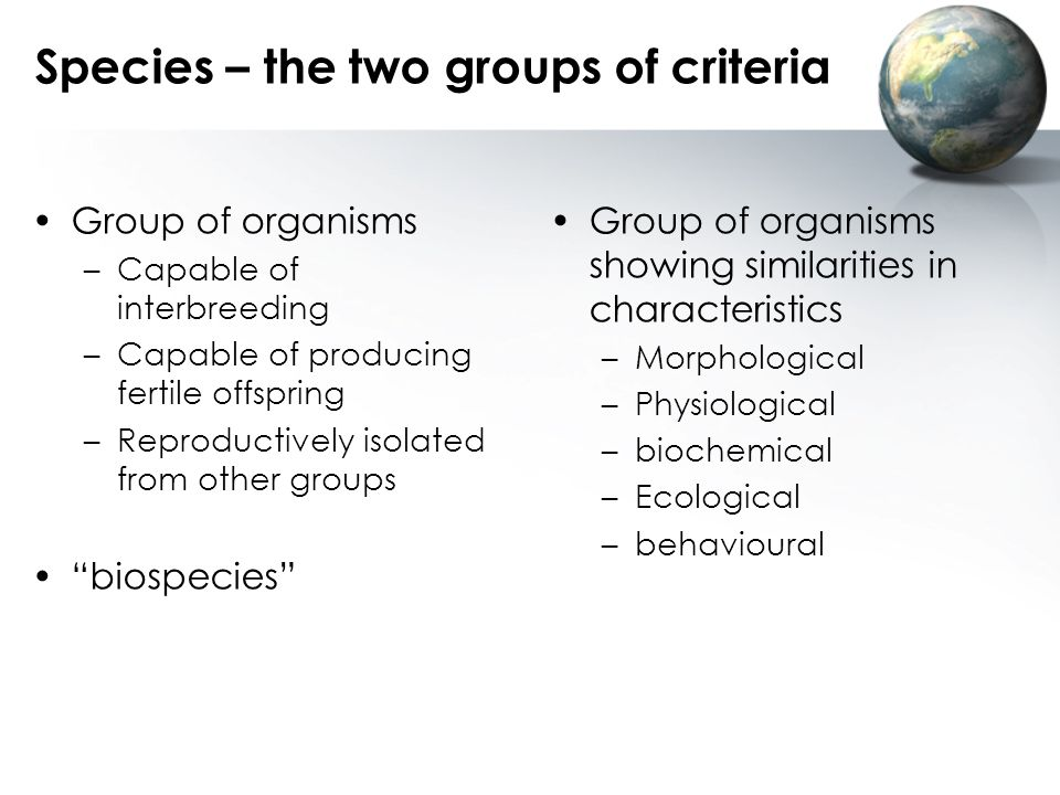 Species – the two groups of criteria