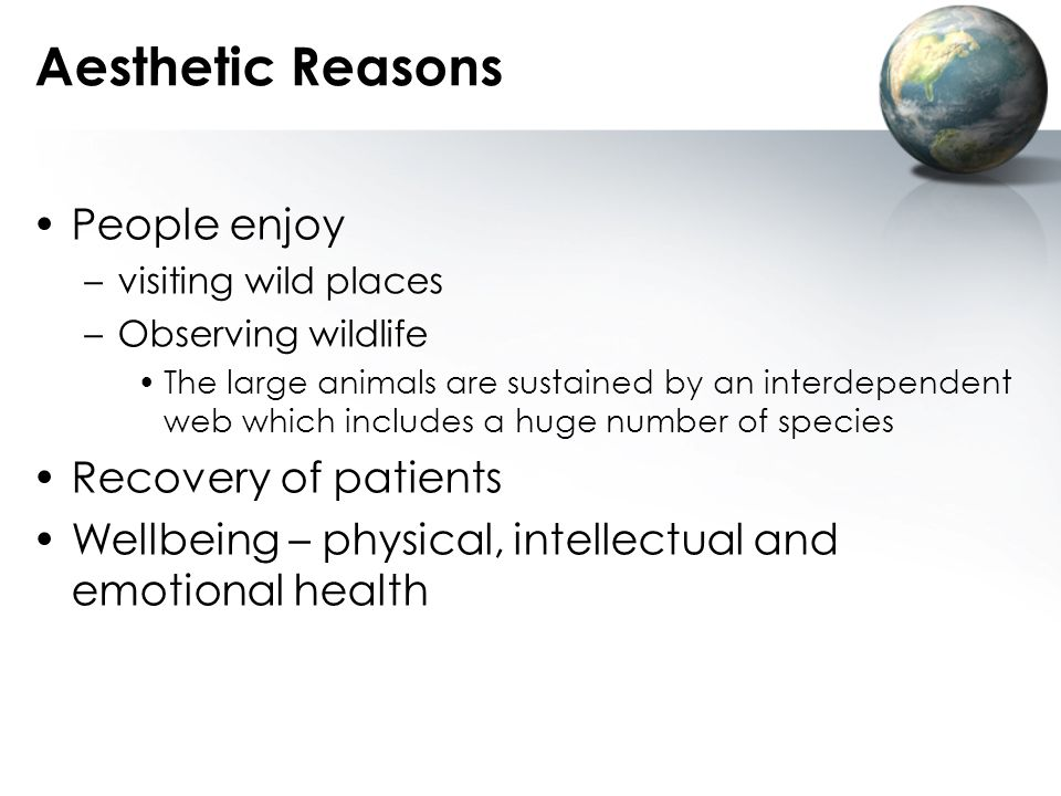 Aesthetic Reasons People enjoy Recovery of patients