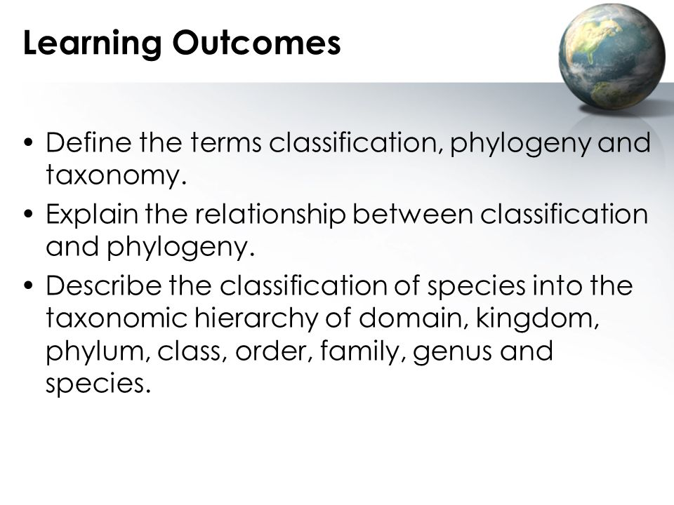 Learning Outcomes Define the terms classification, phylogeny and taxonomy. Explain the relationship between classification and phylogeny.