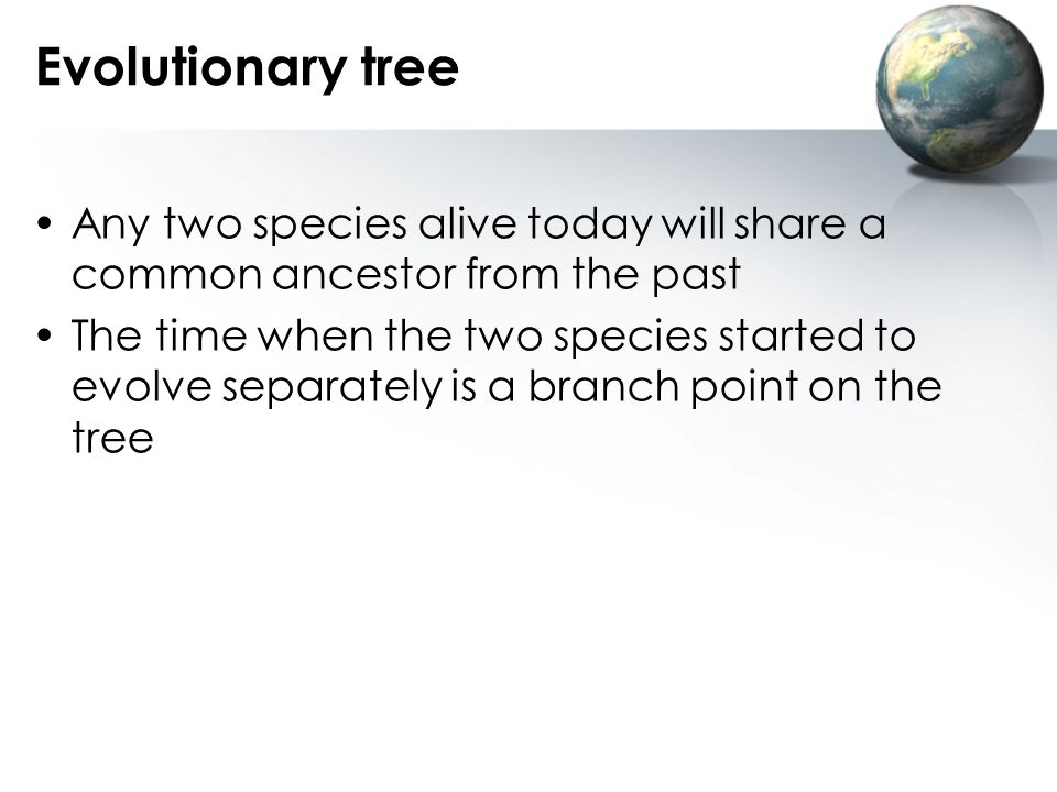 Evolutionary tree Any two species alive today will share a common ancestor from the past.