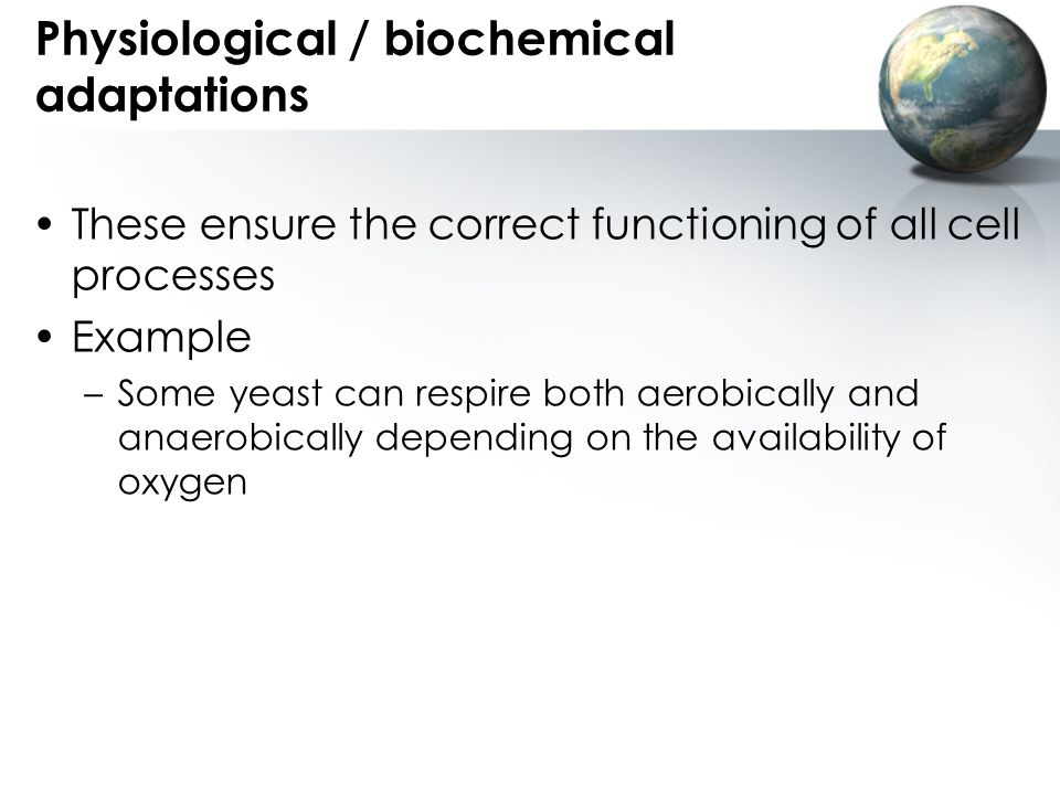 Physiological / biochemical adaptations