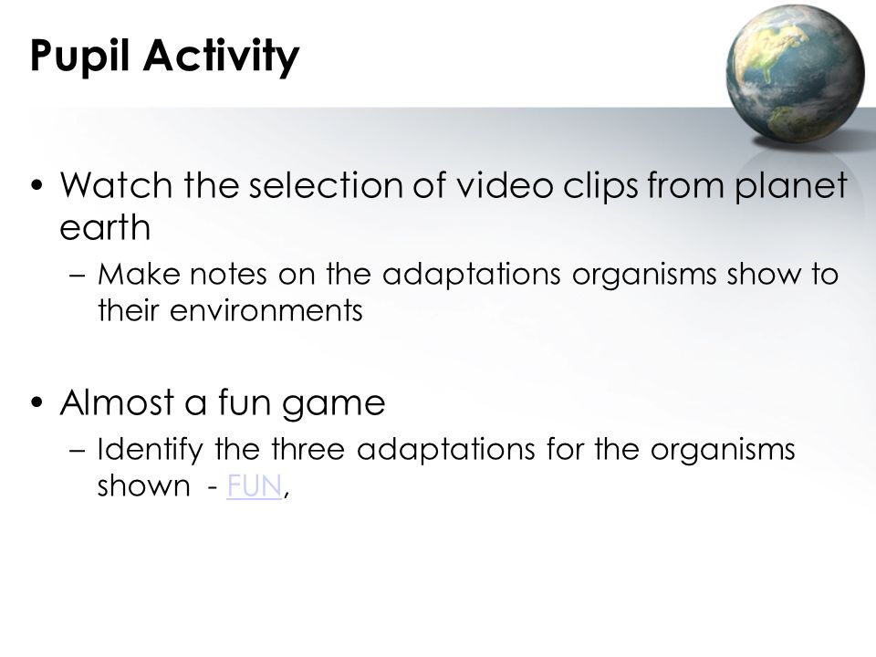 Pupil Activity Watch the selection of video clips from planet earth