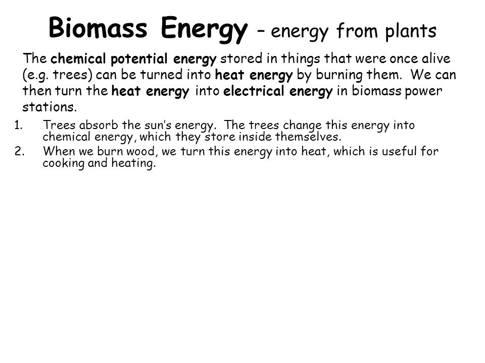 Biomass Energy – energy from plants