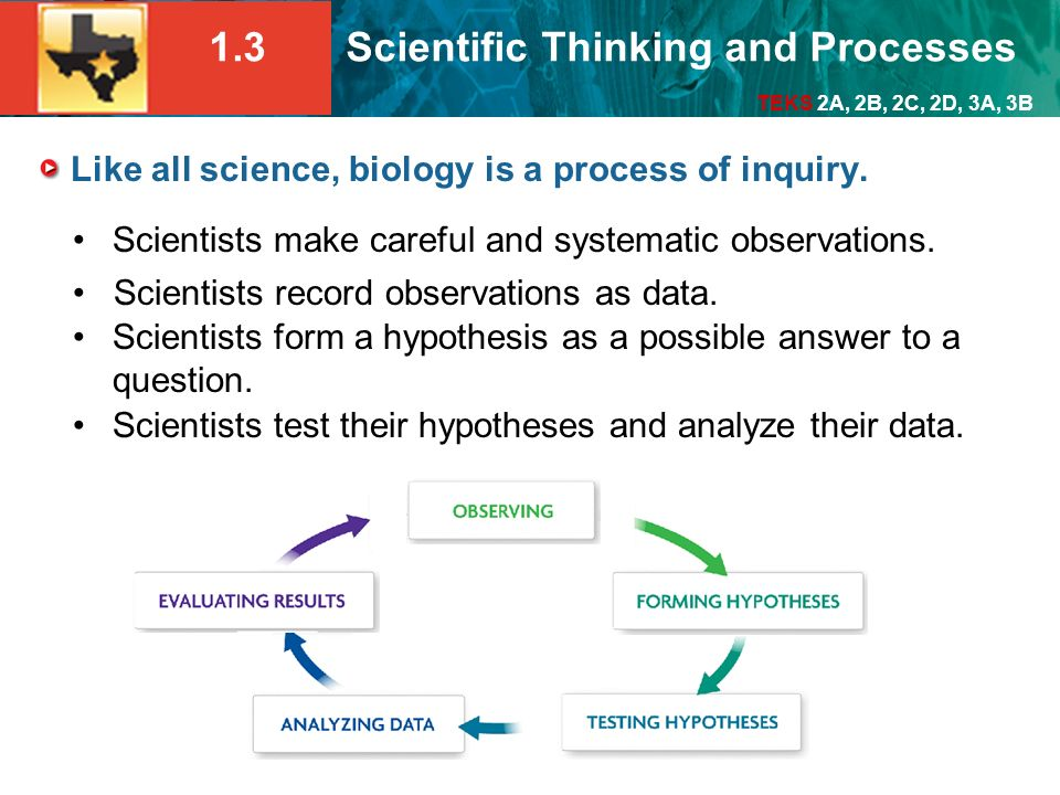 Like all science, biology is a process of inquiry.