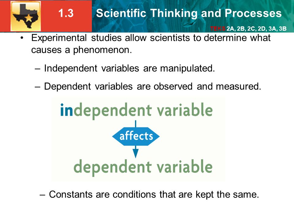 Independent variables are manipulated.