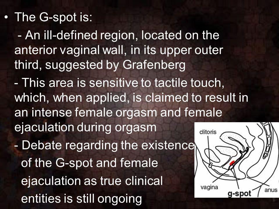 Female orgasm definition
