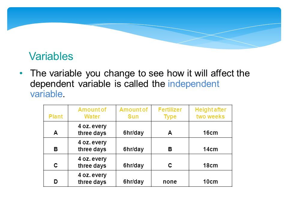 Variables The variable you change to see how it will affect the dependent variable is called the independent variable.