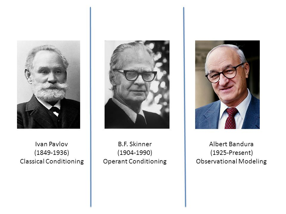 bf skinner operant conditioning theory