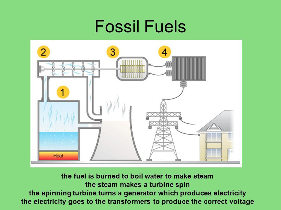 Fossil Fuels the fuel is burned to boil water to make steam