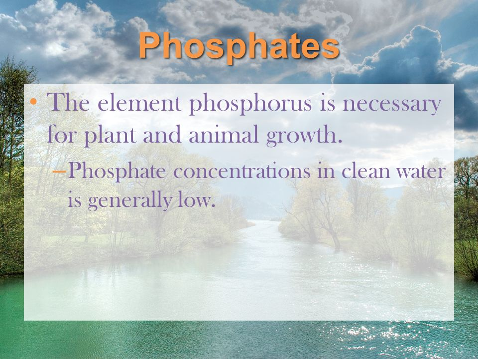 Phosphates The element phosphorus is necessary for plant and animal growth. Phosphate concentrations in clean water is generally low.