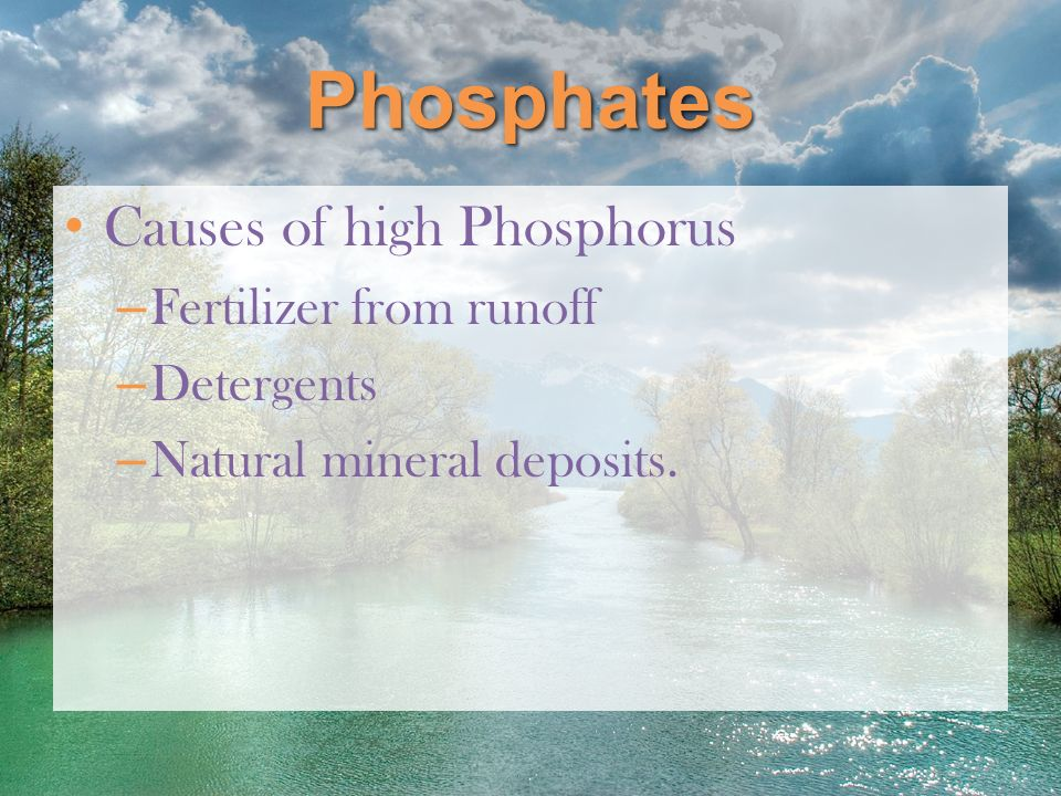 Phosphates Causes of high Phosphorus Fertilizer from runoff Detergents