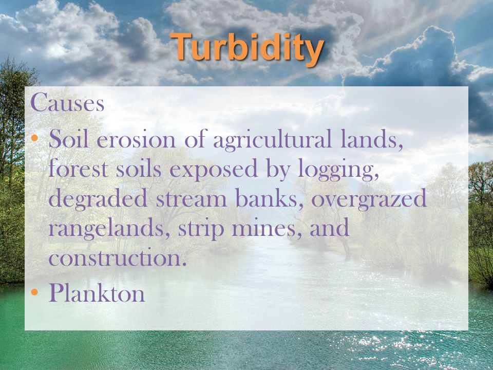 Turbidity Causes.