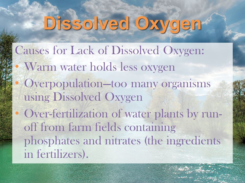 Dissolved Oxygen Causes for Lack of Dissolved Oxygen: