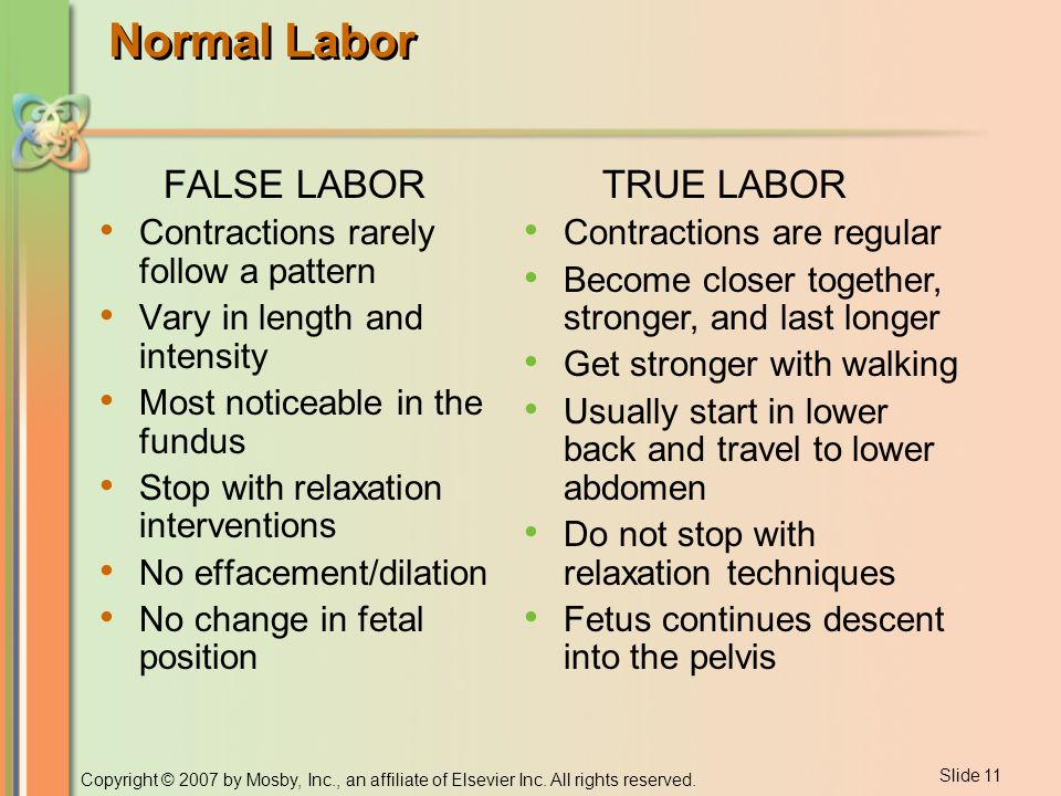 Chapter 26 Labor and Delivery  - ppt download
