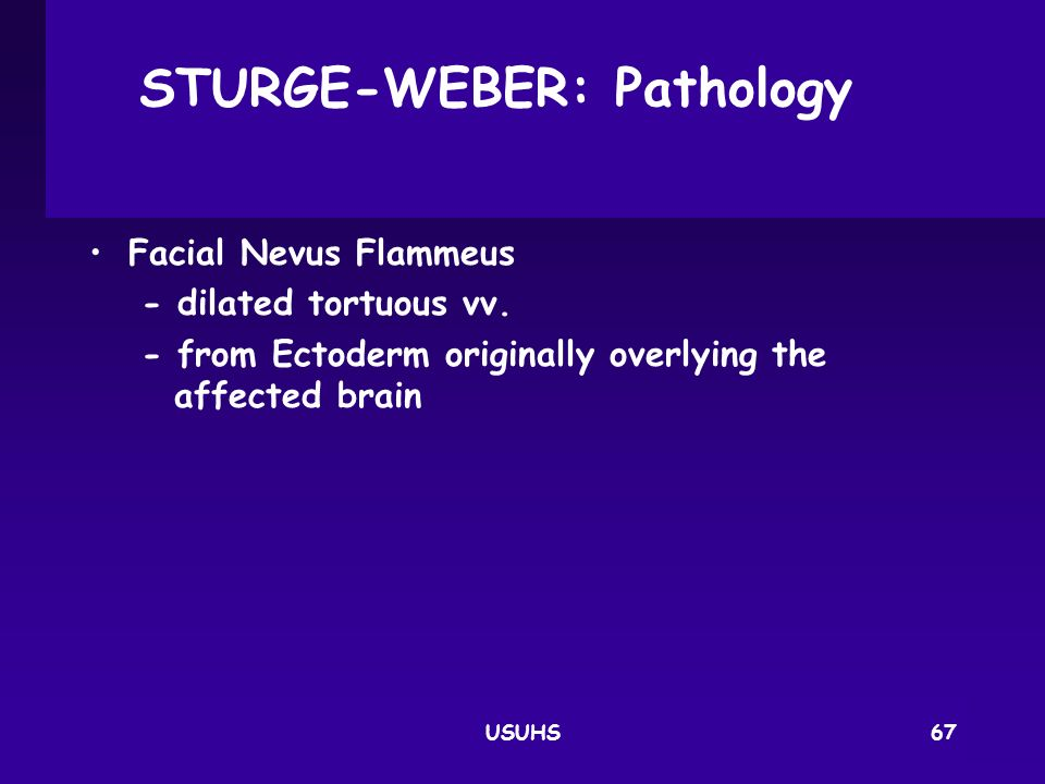 STURGE-WEBER: Pathology
