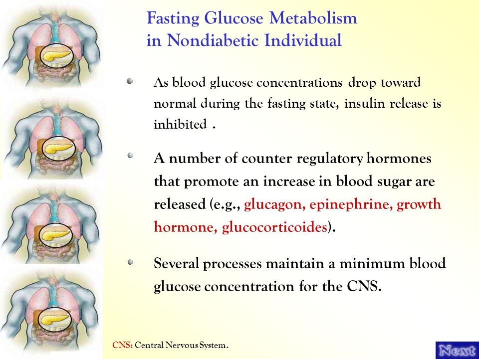 Fasting Glucose Metabolism in Nondiabetic Individual
