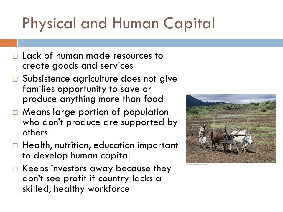 Physical and Human Capital