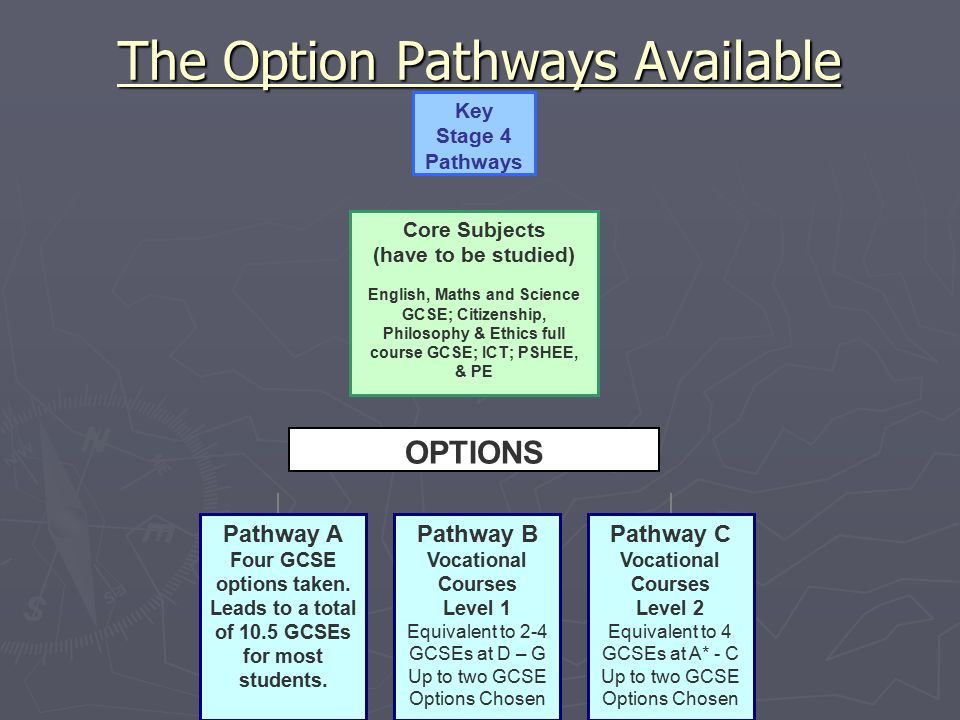 The Option Pathways Available