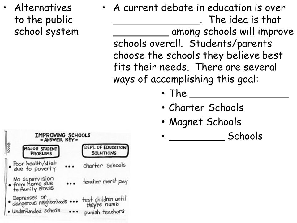Alternatives to the public school system
