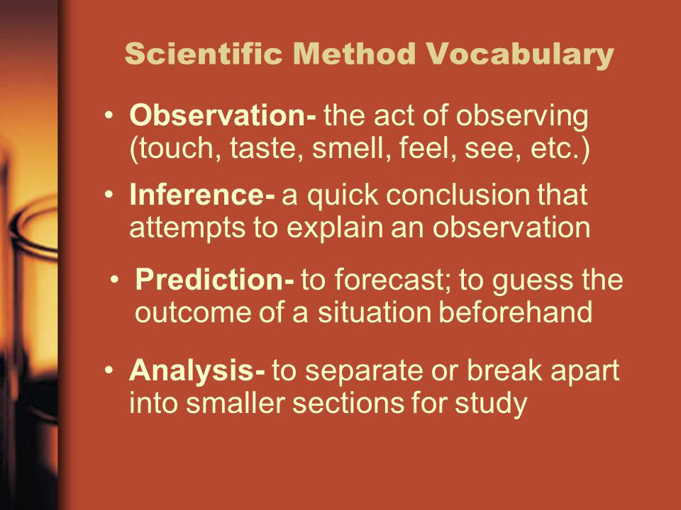 Scientific Method Vocabulary