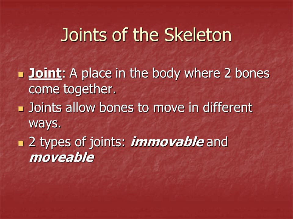 Joints of the Skeleton Joint: A place in the body where 2 bones come together. Joints allow bones to move in different ways.