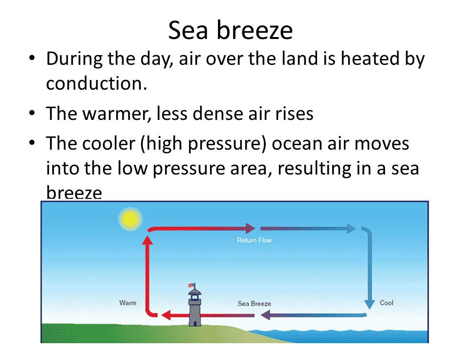 Sea breeze During the day, air over the land is heated by conduction.
