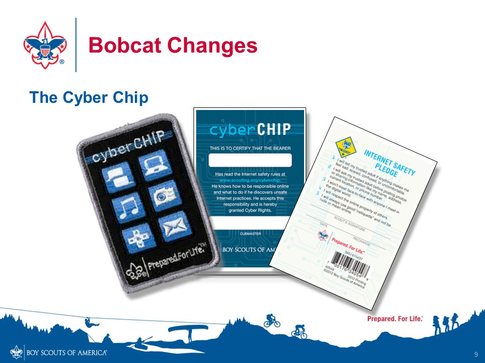 graphic regarding Bsa Cyber Chip Green Card Printable named WELCOME Towards THE Fresh new CUB Experience - ppt down load