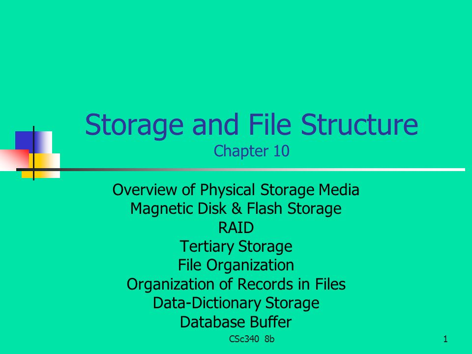 Storage and File Structure Chapter 10