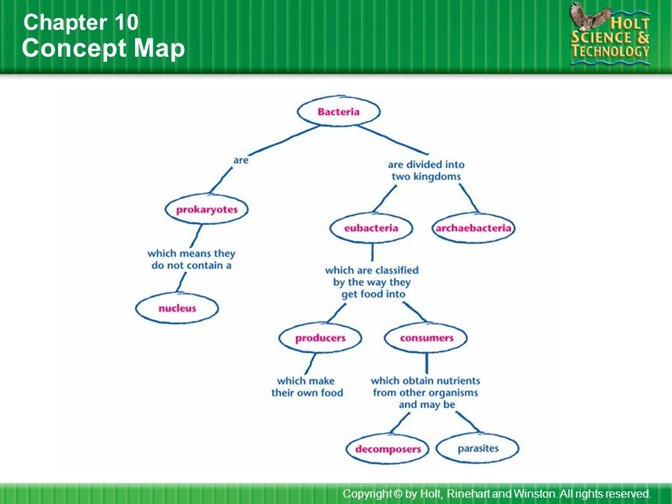 Concept Map Bacteria.How To Use This Presentation Ppt Video Online Download