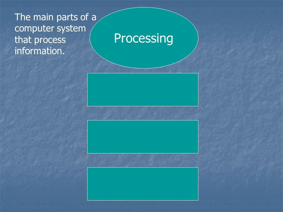 Processing The main parts of a computer system that process information.