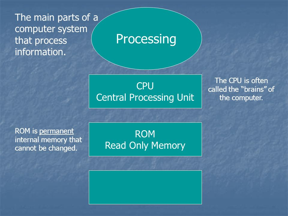 Processing The main parts of a computer system that process information. CPU. Central Processing Unit.