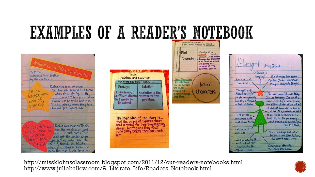 Examples of a Reader's Notebook
