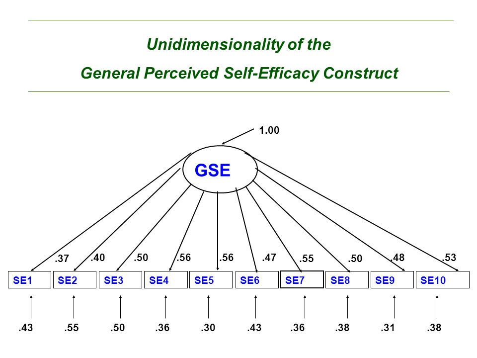 General Perceived Self-Efficacy Construct