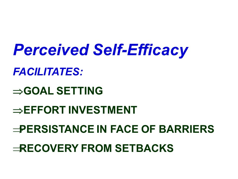 Perceived Self-Efficacy
