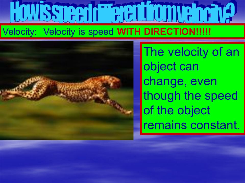 How is speed different from velocity