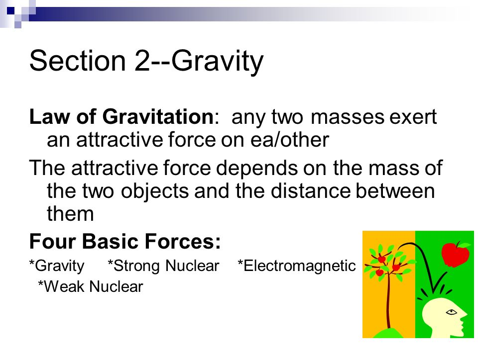 Section 2--Gravity Law of Gravitation: any two masses exert an attractive force on ea/other.