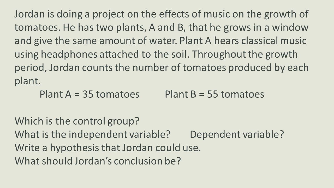 Jordan is doing a project on the effects of music on the growth of tomatoes. He has two plants, A and B, that he grows in a window and give the same amount of water. Plant A hears classical music using headphones attached to the soil. Throughout the growth period, Jordan counts the number of tomatoes produced by each plant.